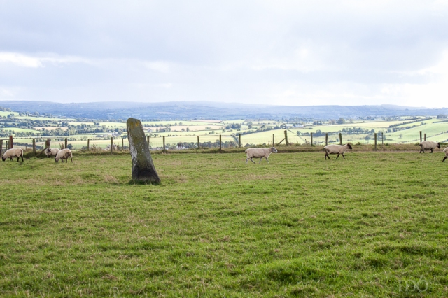 Beltany Stone Circle - Outlier