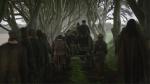 Dark Hedges - Game of Thrones